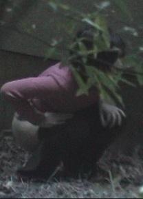 林の中で放尿女